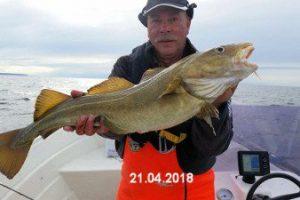 fynshav-angelboot-charter-ostsee-kleiner-belt-meeresangeln- (25)