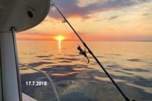 fynshav-angelboot-charter-ostsee-kleiner-belt-meeresangeln- (33)
