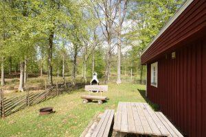 getnö gaard schweden angelreisen ferienhaus barsch (9)