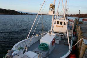 gurvikdal-havfiskesenter-angelreisen-norwegen-angeln-boote- (1)
