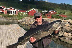 lavangen sjöfiske , lavangen sjofiske , lavangen angeln , aagaard , lavangen norwegen , angelreisen norwegen , angelurlaub norwegen