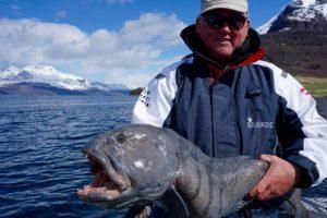 lavangen-sjöfiske-angelreisen-norwegen-angeln- (8)