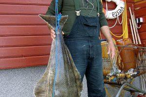 middvik feriesenter norwegen , middvik norwegen , middvik angeln , angelreisen norwegen , angelurlaub norwegen