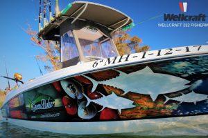 riumar ebro delta spanien angelreisen boot (4)