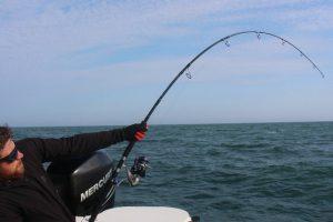riumar spanien ebro delta angelreisen fishing (28)