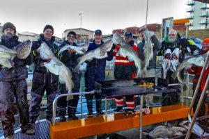 sea-hawk-seahawk-hochseeangeln-gelbes-riff-dänemark-hirtshals-angelreisen- (5)