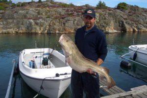 skottevik feriesenter fisch angelreisen norwegen meeresangeln (4)