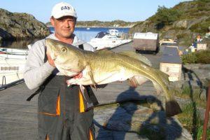 skottevik feriesenter fisch angelreisen norwegen meeresangeln (5)