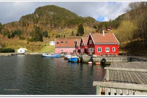 solvag-fjordferie-norwegen-angelreisen-haus1-3- (5)