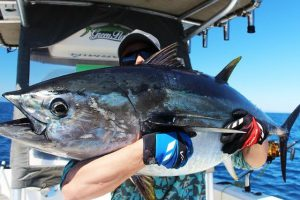 valencia-big-game-fishing (10)