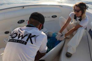 Naturköder für das Thunfisch angeln Spanien ab Valencia